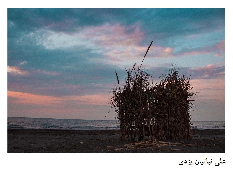 علی نباتیان یزدی